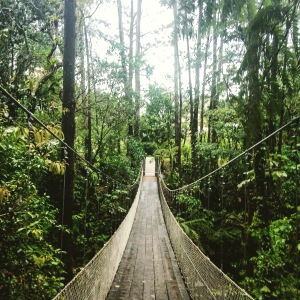 Hanging Bridge at Arenal Volcano